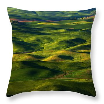 Furrows And Folds Throw Pillow by Mike  Dawson