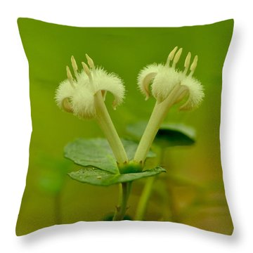 Throw Pillow featuring the photograph Fuzzy Blooms by JD Grimes