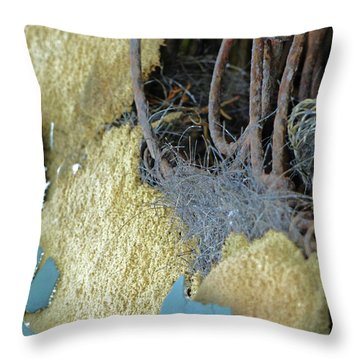 Throw Pillow featuring the photograph Fuzzy Notion by Newel Hunter
