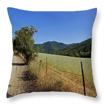 Galls Creek Road In Southern Oregon Throw Pillow by Mick Anderson