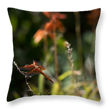 Throw Pillow featuring the photograph Garden Orange  by Priya Ghose