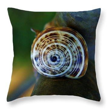Throw Pillow featuring the photograph Garden Snail On Frangipani  by Werner Lehmann