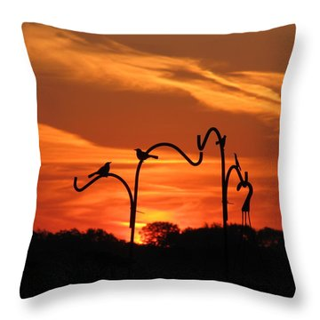 Throw Pillow featuring the photograph Garden Sunrise by Tina M Wenger