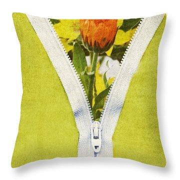 Garden Window Throw Pillow by Bonnie Bruno