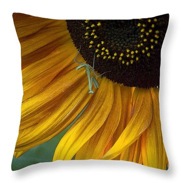 Garden's Friend Throw Pillow by Jim And Emily Bush