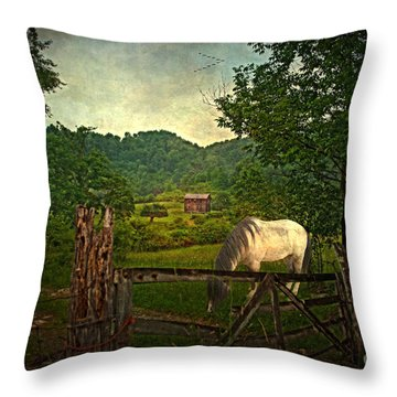 Gate To The Past Throw Pillow by Lianne Schneider