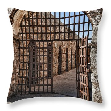 Gateway To The Unknown Throw Pillow by Sandra Bronstein