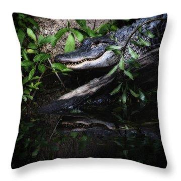 Gator Reflect Throw Pillow by Karol Livote