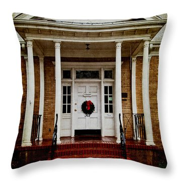Genealogical Library  Throw Pillow by Toni Hopper