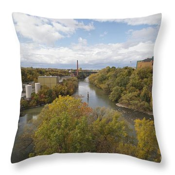 Throw Pillow featuring the photograph Genesee River by William Norton