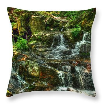 Gentle Falls Throw Pillow by Dan Stone
