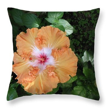 Gentle Orange Hibiscus Throw Pillow by Connie Fox