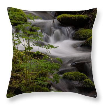 Gently Falling Throw Pillow by Mike Reid