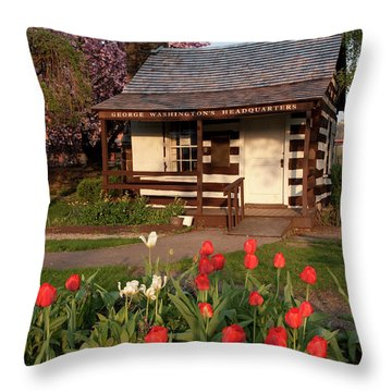 Throw Pillow featuring the photograph George Washington's House by Jeannette Hunt