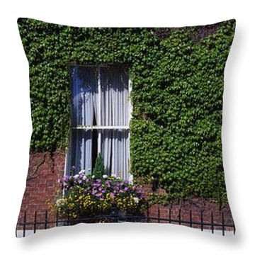 Georgian Doors, Fitzwilliam Square Throw Pillow by The Irish Image Collection