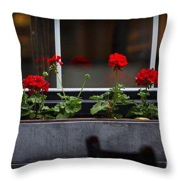 Geranium Flower Box Throw Pillow by Doug Sturgess