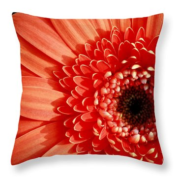 Gerber Perfection Throw Pillow by Inspired Nature Photography Fine Art Photography