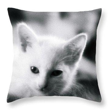 Ghost Kitties Throw Pillow