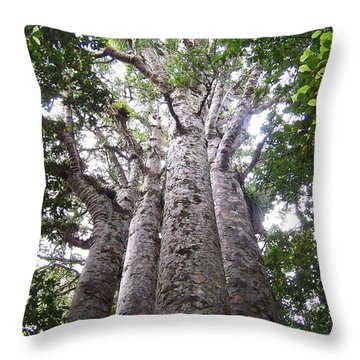 Throw Pillow featuring the photograph Giant Kauri Grove by Peter Mooyman