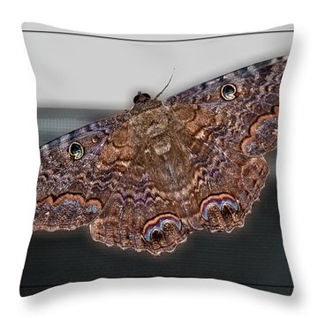 Throw Pillow featuring the photograph Giant Moth by DigiArt Diaries by Vicky B Fuller