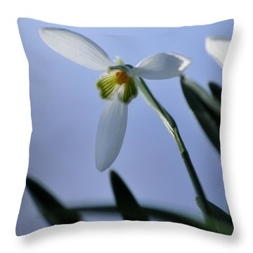 Giant Snowdrop Throw Pillow