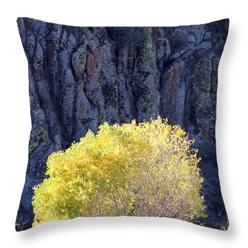 Gilded Autumn Throw Pillow