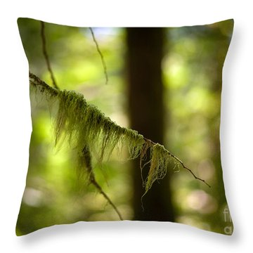 Gilded Branch Throw Pillow by Mike Reid