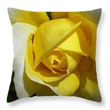 Gina Lollobrigida Rose Throw Pillow by Kaye Menner