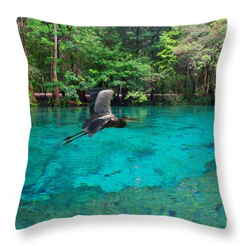 Ginnie Springs Throw Pillow