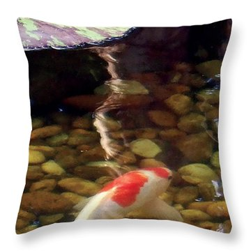 Give Me Shelter Throw Pillow