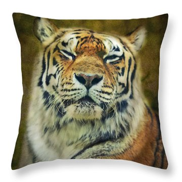 Give Me Your Tender Look Throw Pillow by Aimelle