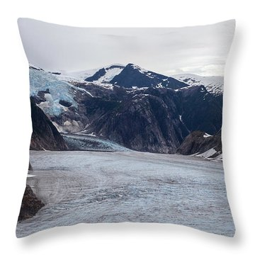 Glacial Field Throw Pillow