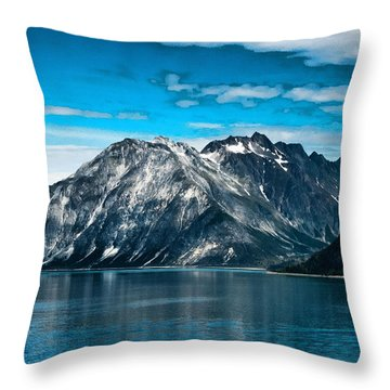 Glacier Bay Alaska Throw Pillow by Jon Berghoff