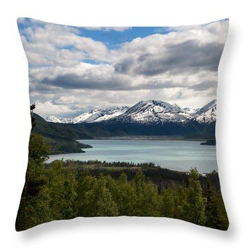 Glacier Water Throw Pillow