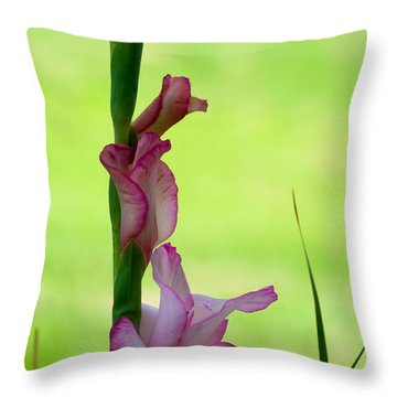 Throw Pillow featuring the photograph Gladiolus Blossoms by Ed Gleichman