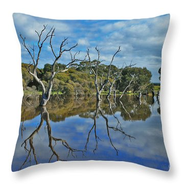 Throw Pillow featuring the photograph Glass Lake by Stephen Mitchell