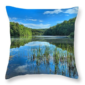 Glassy Waters Throw Pillow by Adam Jewell