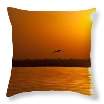 Glides Into Evening Throw Pillow by Karol Livote