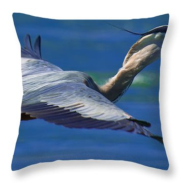 Gliding Great Blue Heron Throw Pillow by Sebastian Musial