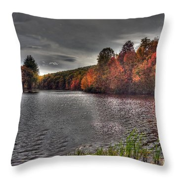 Glimmer Matthies Island Throw Pillow