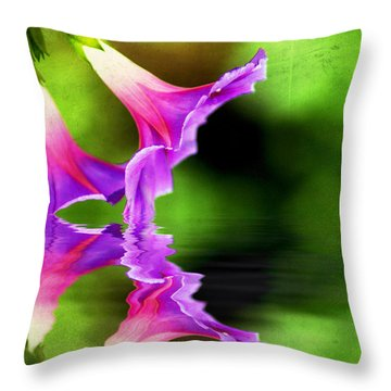 Glory Reflection Throw Pillow by Darren Fisher