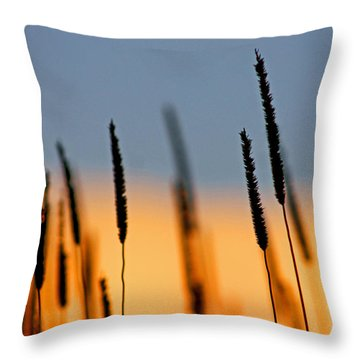 Throw Pillow featuring the photograph Glow by Bruce Patrick Smith