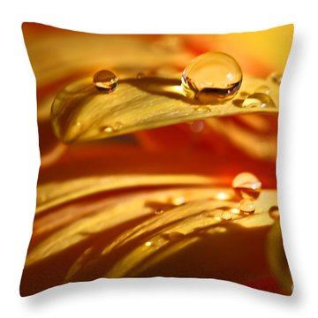 Glowing Amber Throw Pillow by Tracy  Hall
