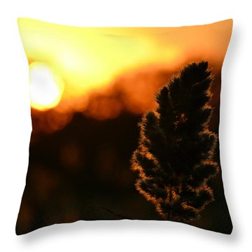 Glowing Leaf Throw Pillow by Zawhaus Photography