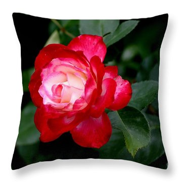 Throw Pillow featuring the photograph Glowing by Living Color Photography Lorraine Lynch