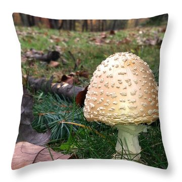 Gnomes Eye View Throw Pillow by Trish Hale