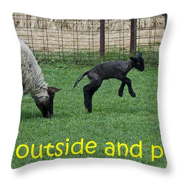 Go Outside And Play Throw Pillow by LeeAnn McLaneGoetz McLaneGoetzStudioLLCcom