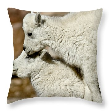 Goat Babies Throw Pillow