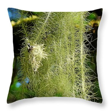 Throw Pillow featuring the photograph Goat's Beard Lichen by Nick Kloepping
