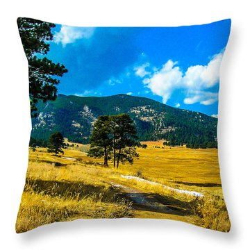 Throw Pillow featuring the photograph God's Country by Shannon Harrington